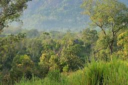 Desentralisasi dan Privatisasi Taman Nasional