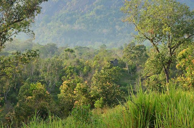Desentralisasi dan Privatisasi Taman Nasional.lelemuku.com.jpg