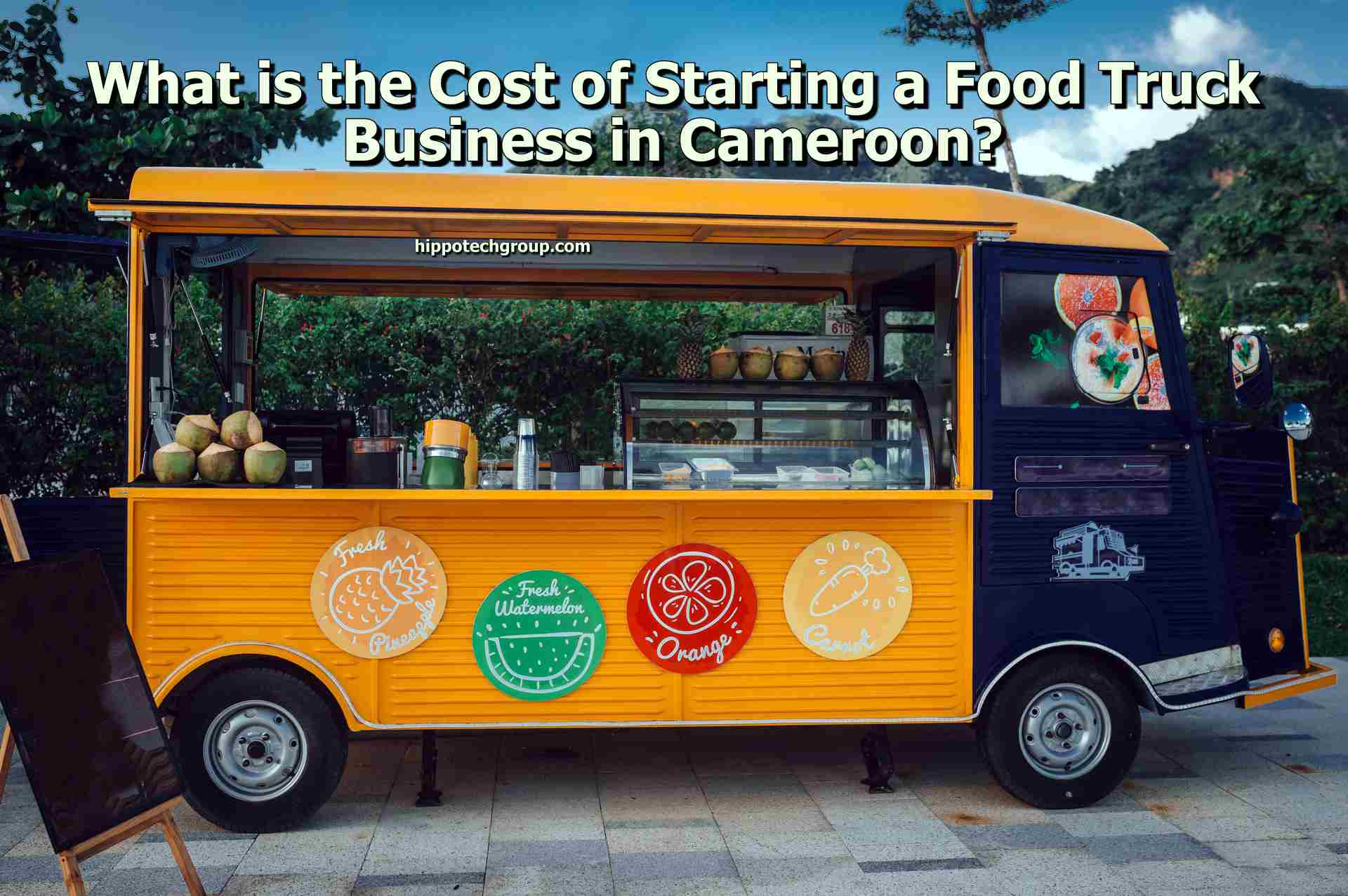 What is the Cost of Starting a Food Truck Business in Cameroon?