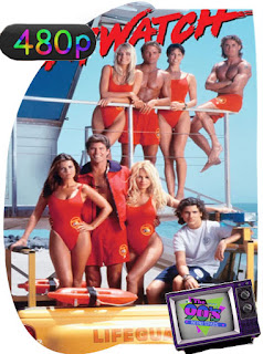 Los Vigilantes de la Playa (1989)Castellano [GoogleDrive] SXGO