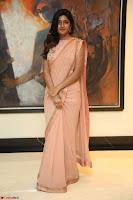 Eesha Rebba in beautiful peach saree at Darshakudu pre release ~  Exclusive Celebrities Galleries 059.JPG