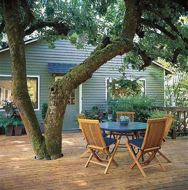 Árvores antigas trazem charme à moradia