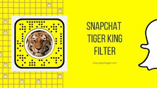 Filter tiger king instagram | Cara Mendapatkan Filter Tiger King Joe Exotic dengan mudah