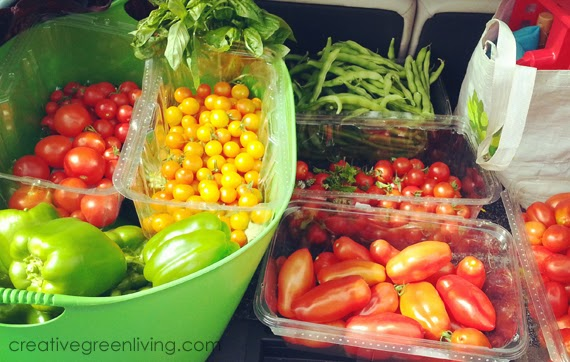 how to grow better tomatoes #creativegreenliving