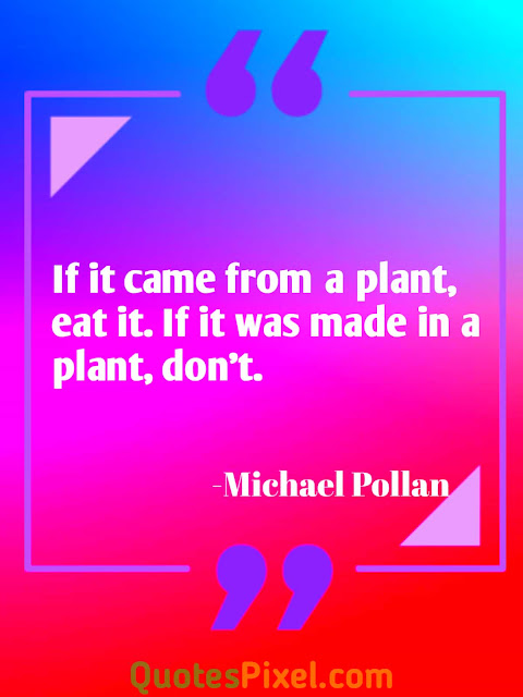 """If it came from a plant, eat it. If it was made in a plant, don''- Michael Pollan"