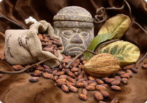 Los Mayas y el Ka'kau' (Cacao) - Cacao´s Theobroma ~ Cacao