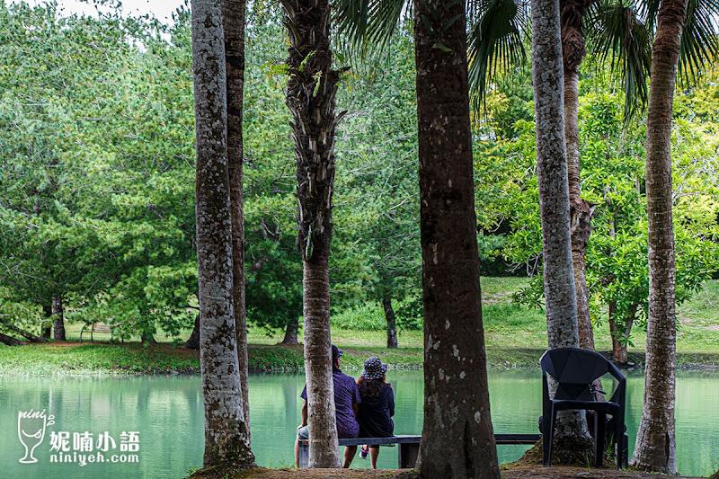 【花蓮壽豐景點】雲山水夢幻湖。超現實空靈秘境無料參觀