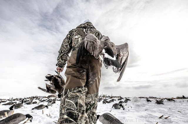 6 Things to Do Before Duck Season Ends