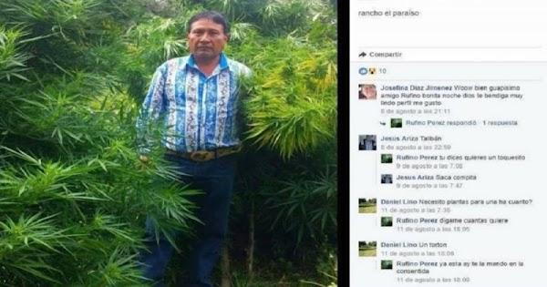 """Regidor de Puebla posa entre plantas de marihuana y con camisa de """"El Chapo"""""""