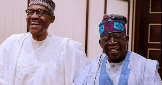 Dear Senator Tinubu, Buhari has thrashed us all!
