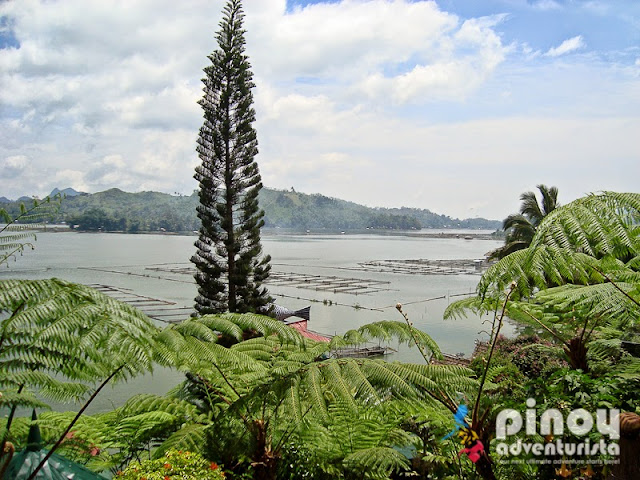 WHERE TO EAT IN LAKE SEBU - Tilapia Overload at Punta Isla Lake Resort