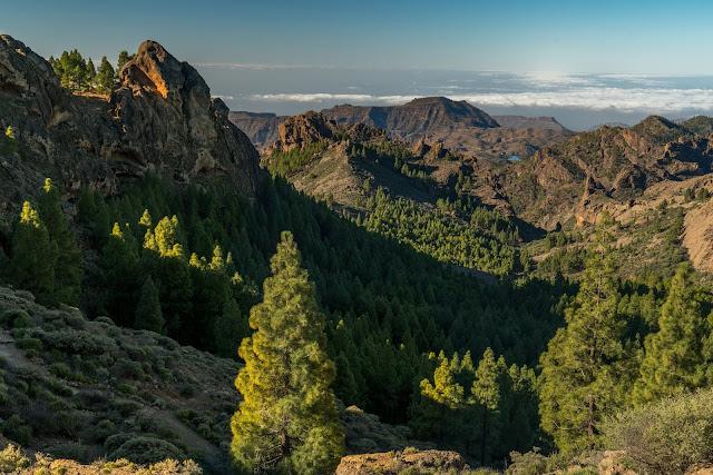 Roque Nublo  Kurze Rundwanderung auf Gran Canaria  Wandern-Gran-Canaria 08