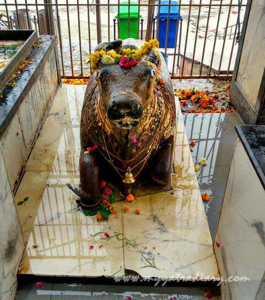 Nandi Bull at the Anandeshwar Mandir Kanpur, Uttar Pradesh