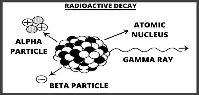What is Radioactive Decay? Explained