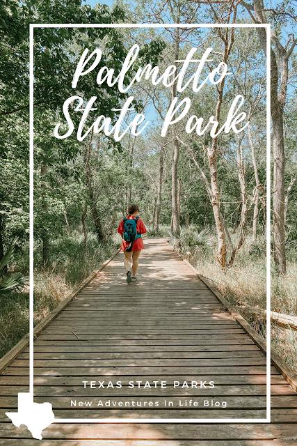 Palmetto State Park Guide
