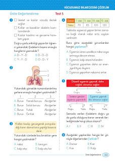 5. Sınıf Peygamberimizin Hayatı Ders Kitabı Cevapları Yargı Sayfa 33