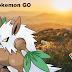 Cara Menangkap Shiftry Pokemon GO Dengan Mudah