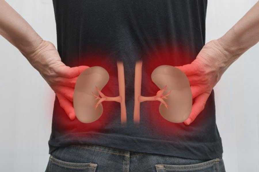 10 Common Habits That May Harm Your Kidneys