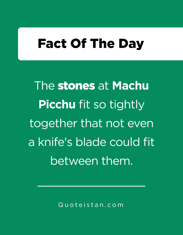 The stones at Machu Picchu fit so tightly together that not even a knife's blade could fit between them.