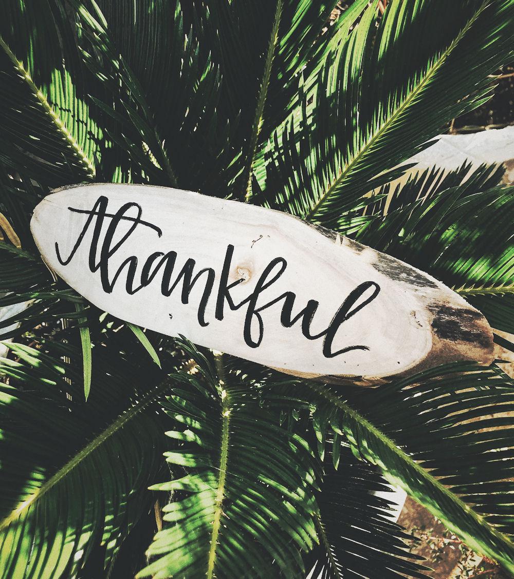 tacksamhetslogg