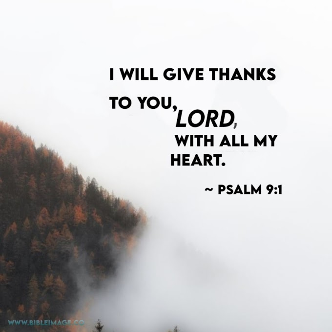 Best And Most Popular Short Psalms Quotes  - Bible Quotes In English