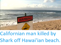 https://sciencythoughts.blogspot.com/2019/05/californian-man-killed-by-shark-off.html