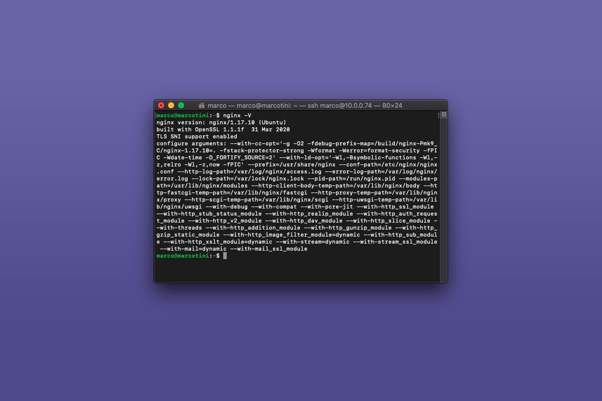 Come visualizzare la versione di nginx