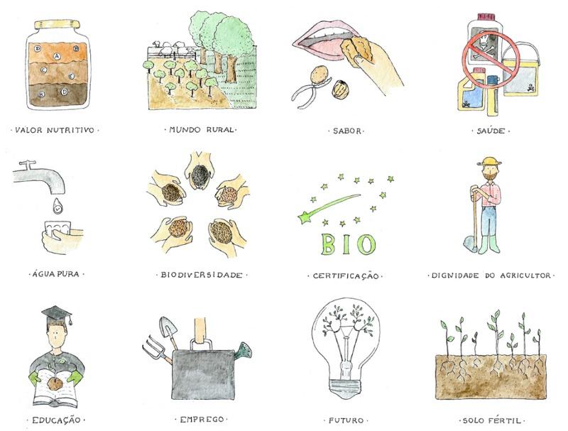 Ilustração: 12 razões para consumir bio