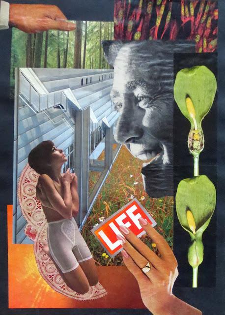 Collage by Claudia Mazzie-Ballheim