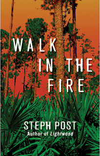 https://mybookthemovie.blogspot.com/2018/01/steph-posts-walk-in-fire.html