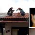 Sobe para 2 mil casas atingidas pela chuva de granizo em Panambi