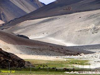 लद्दाख बाइक यात्रा- 14 (चांग ला - पेंगोंग)
