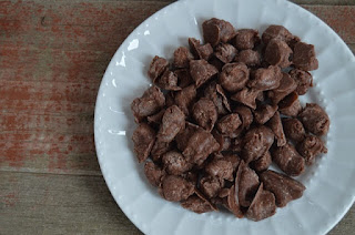 Metabolism Boosting Healthy Chocolate Chunks