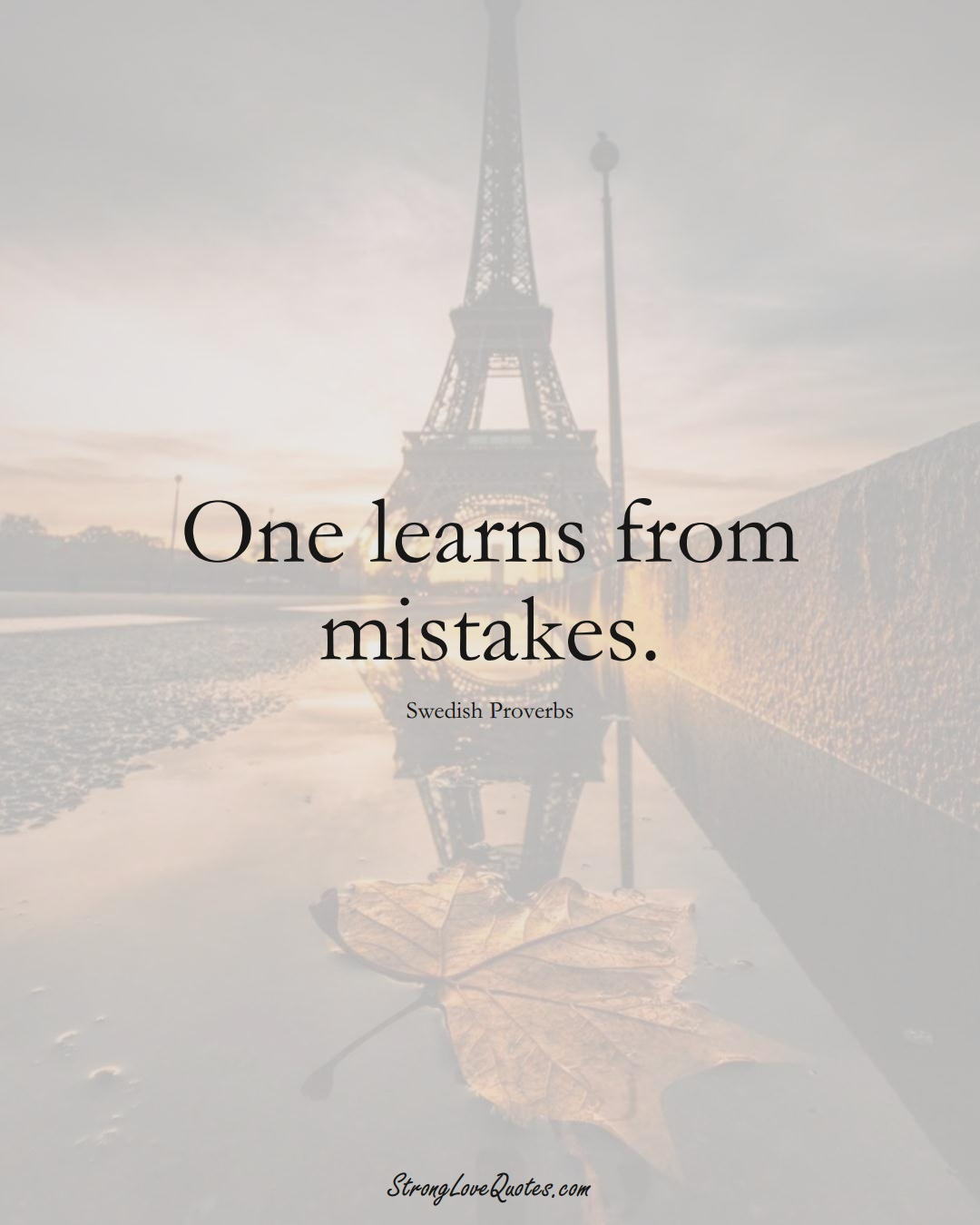 One learns from mistakes. (Swedish Sayings);  #EuropeanSayings