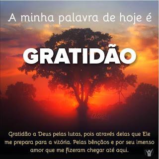 Bom Dia A palavra de Hoje é Gratidão Vídeo mensagem de Aniversário te Deseja um Dia Produtivo e Feliz