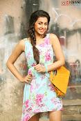 Nikki Galrani glamorous Portfolio-thumbnail-8