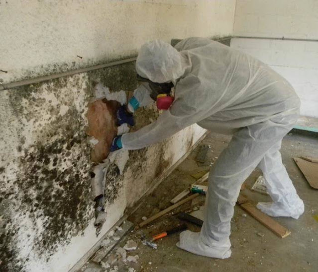mold and vital techniques