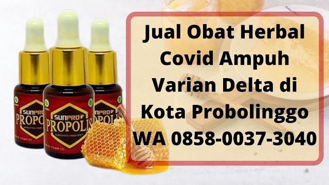 Jual Obat Herbal Covid Ampuh Varian Delta di Kota Probolinggo WA 0858-0037-3040