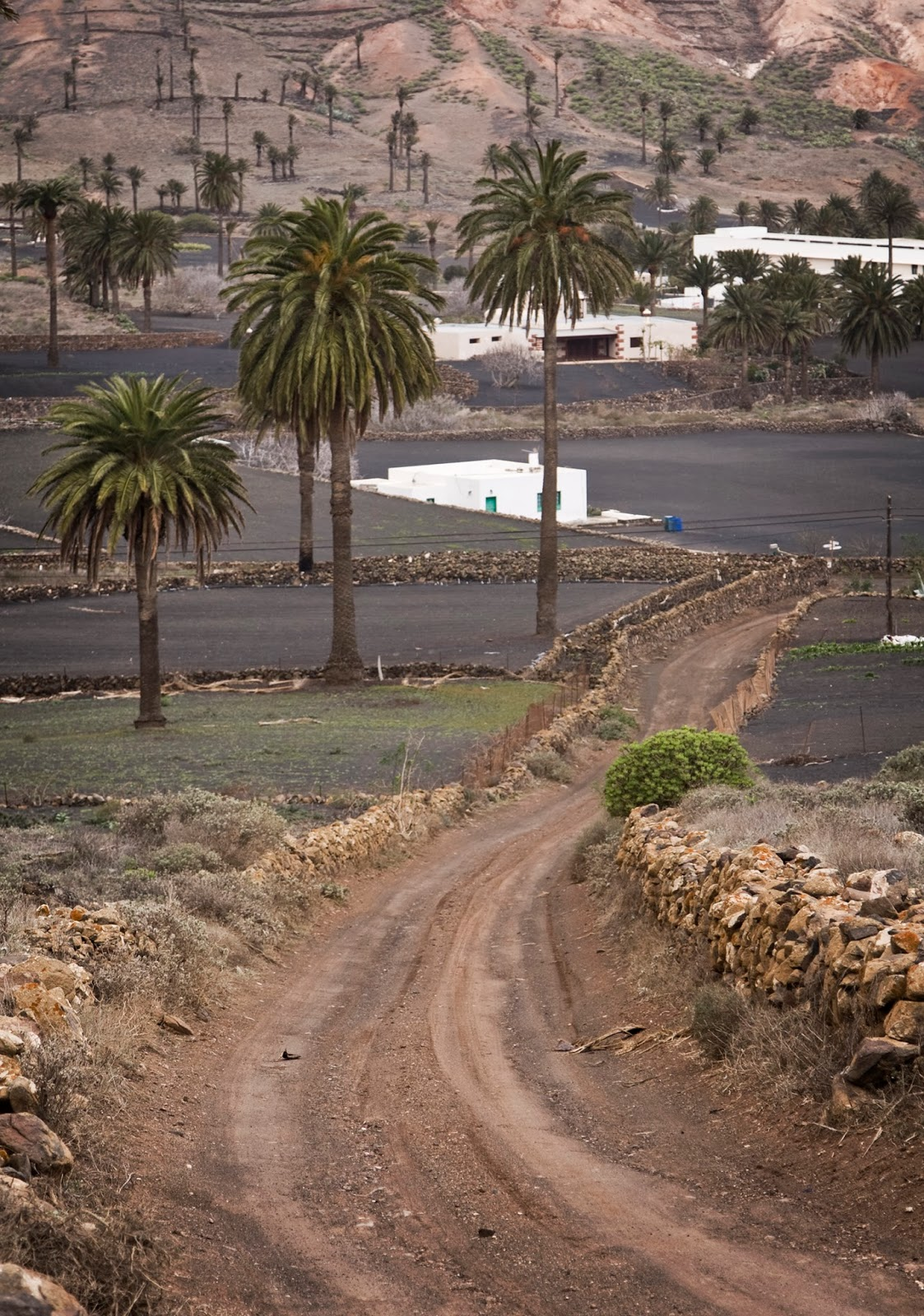 Lanzarote, North Afica, Dirt Road