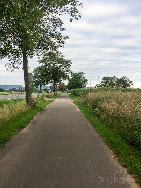 Rad-Weg Richtung Feld des Jammers