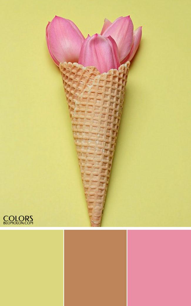 plantilla_base_paletas_de_colores_1