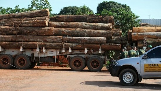 juiza devolver cargas madeira pf confiscou