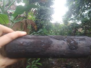 Fungsi arang kayu