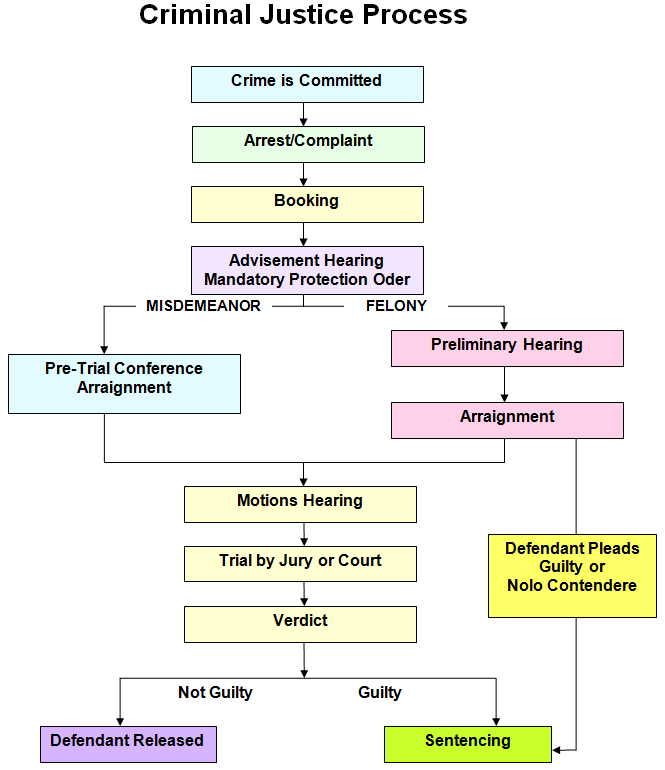 The criminal justice system and process Homework Sample