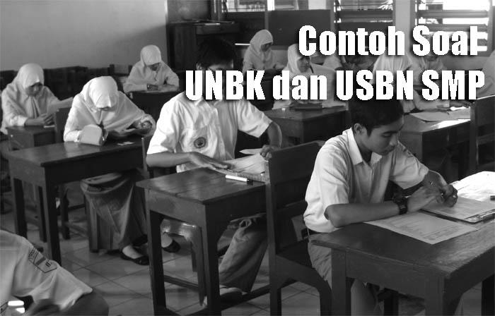 unbk usbn smp