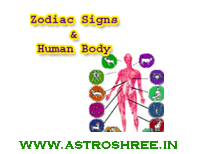 rashi place in human body as per astrology