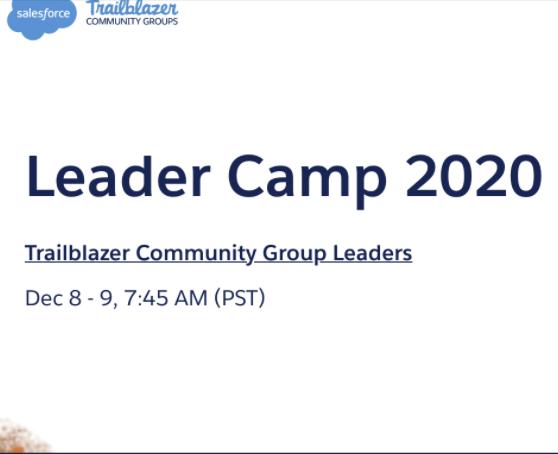 Tigh Loughhead moderating Salesforce Leader Camp 2020