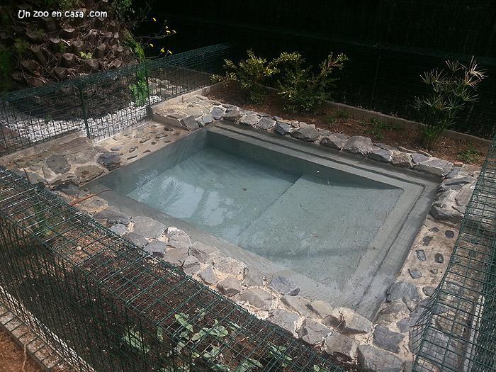un zoo en casa construcci n de un estanque de hormig n