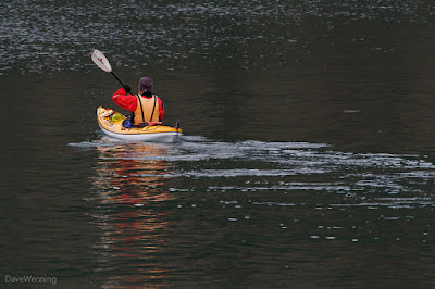 Kayaker in Rosario Bay