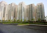 Apartments for sale DLF Park Place Gurgaon